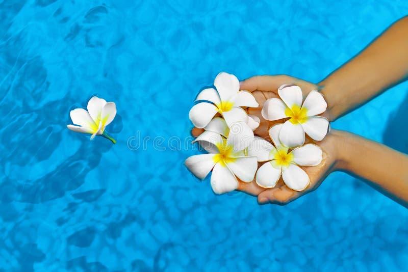 Salute della donna Estate La stazione termale fiorisce la plumeria in acqua Benessere, fotografia stock