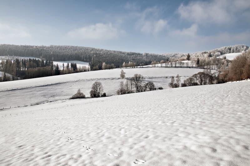 Saluti di inverno da paesaggio nevoso fotografia stock libera da diritti