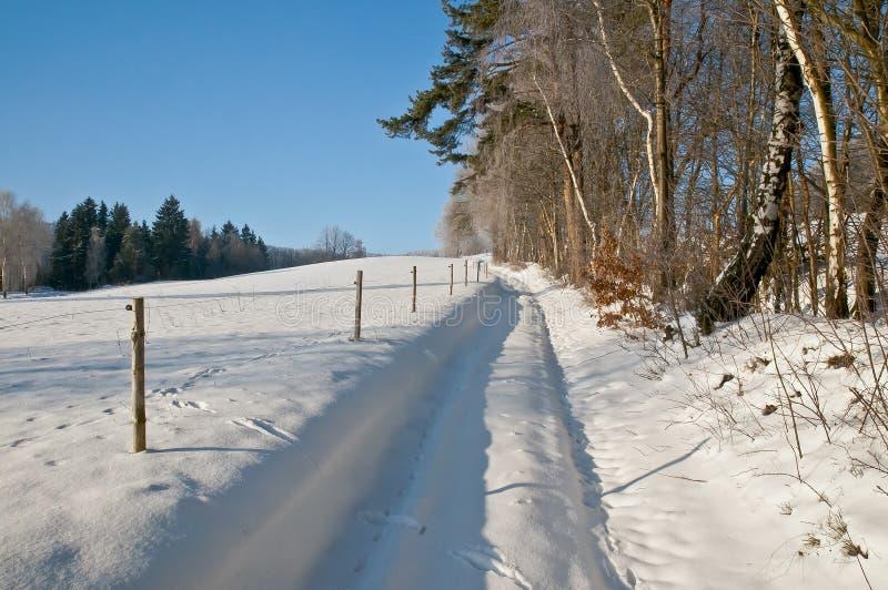 Saluti di inverno da paesaggio nevoso immagine stock