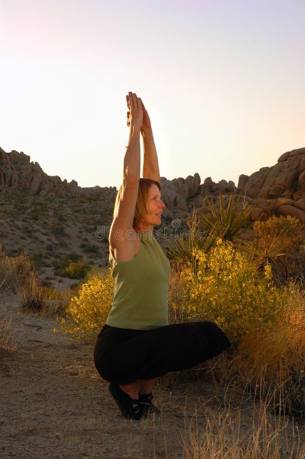 Saluto di yoga di crepuscolo fotografie stock libere da diritti