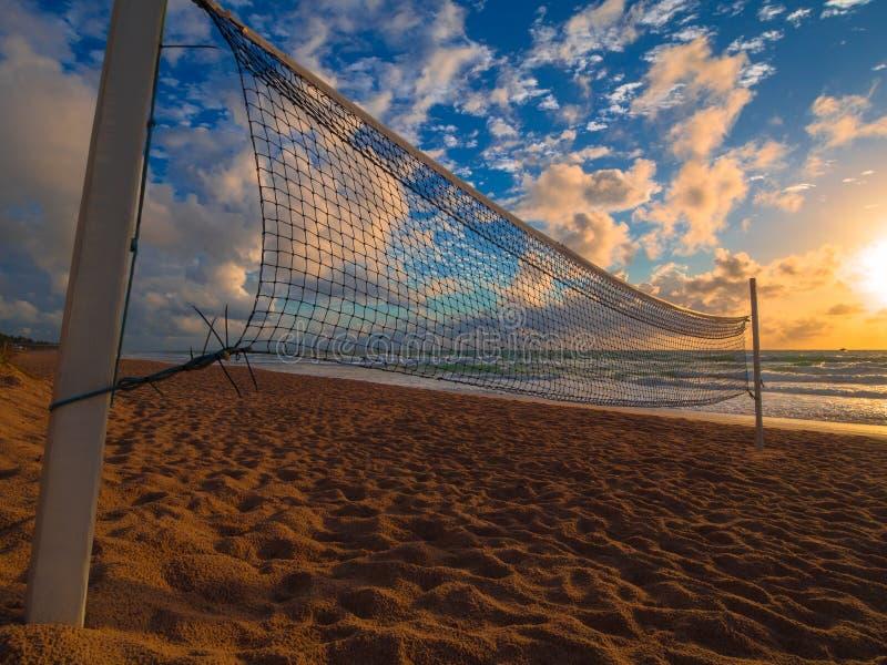 salva för sport för strandtecknad filmcharactetrs rolig fotografering för bildbyråer