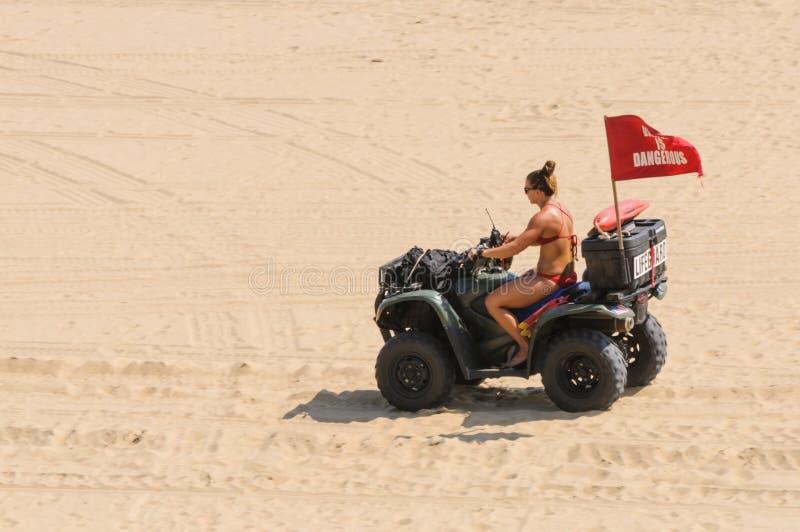 a salva-vidas Biquini-folheada conduz um carrinho de duna em Virginia Beach, VA imagens de stock royalty free