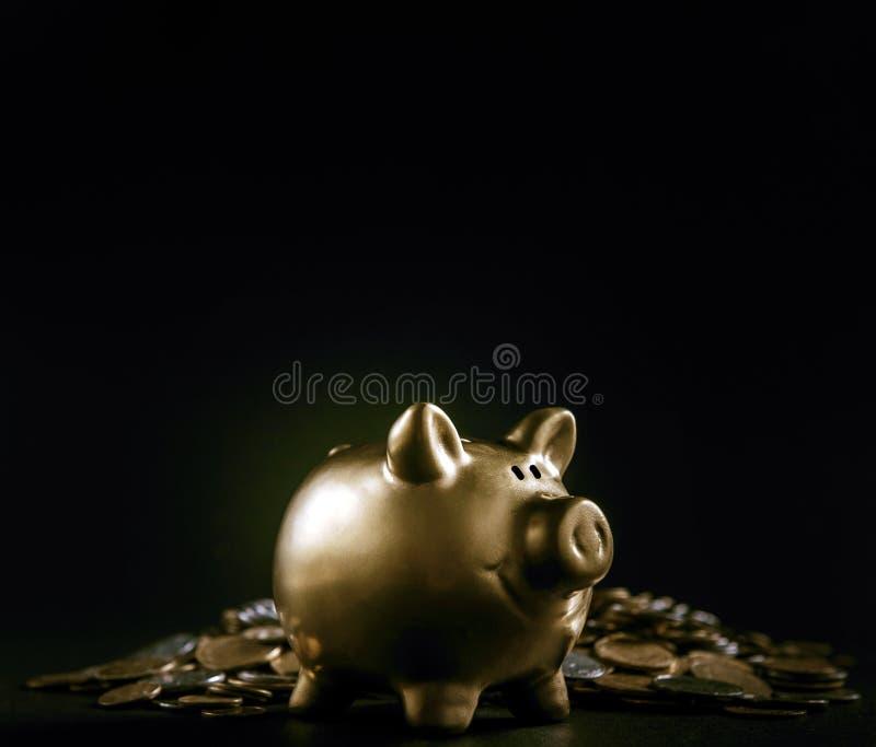 Salvadanaio dorato di lusso del maiale su fondo nero concetto di grande finanza di risparmio immagini stock