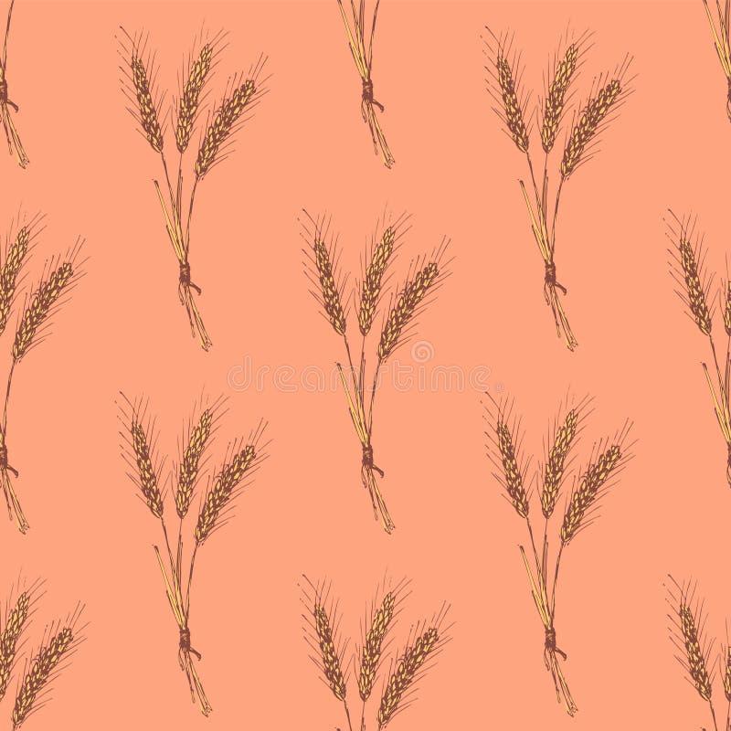 Salvado de trigo del bosquejo en estilo del vintage stock de ilustración
