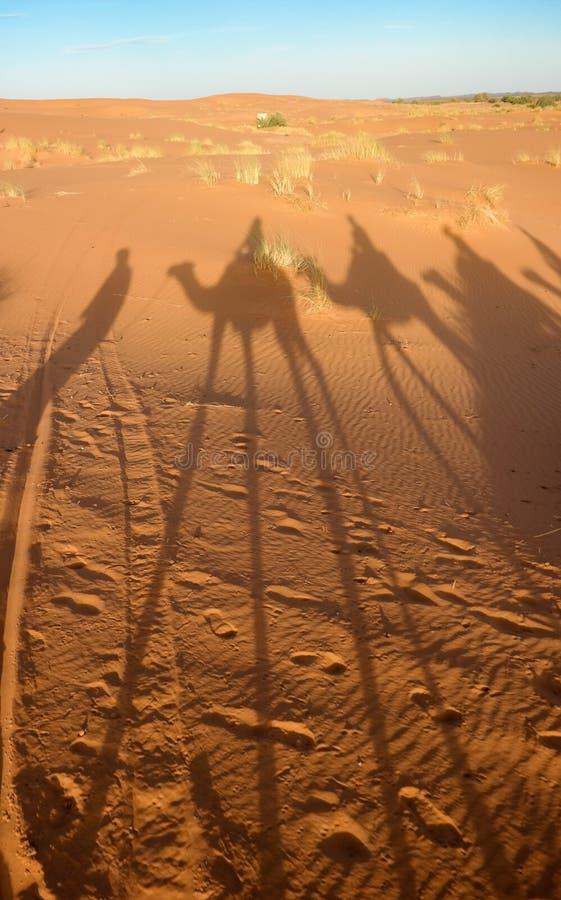 Salvador Dali foto de archivo