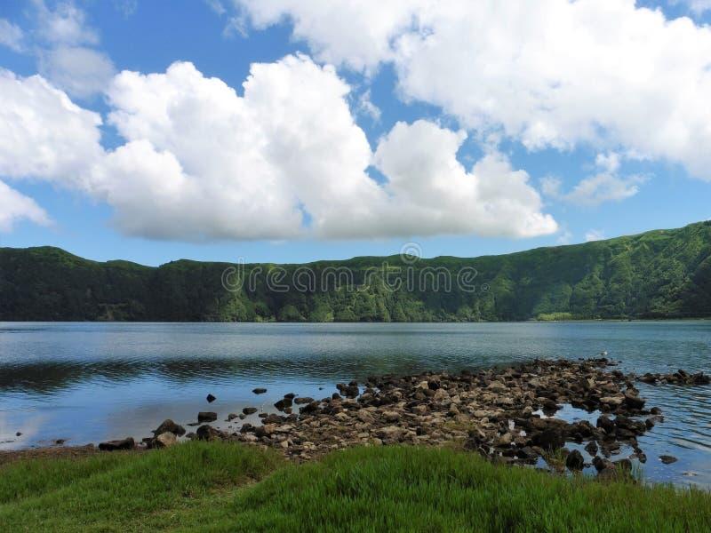 Salvaje della bacca di São Miguel fotografia stock libera da diritti