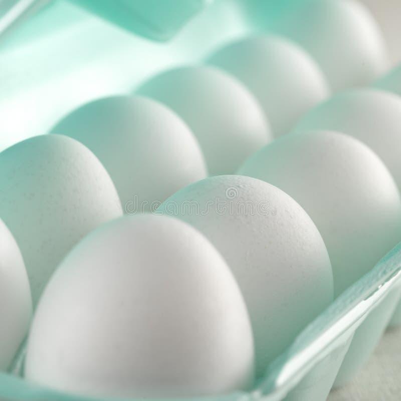 Salve el primer comprado de los huevos blancos imagen de archivo libre de regalías