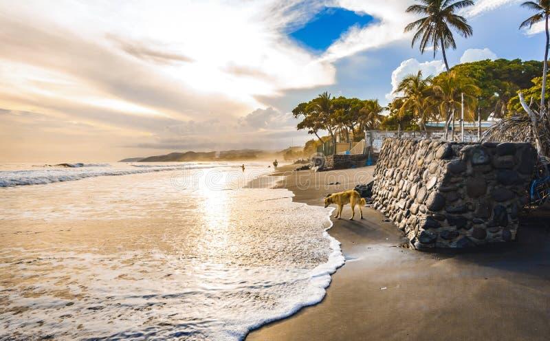 Salwador sen, taki nie doceniać kraj fotografia stock