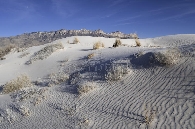 Salz-Becken-Dünen in Guadalupe Mountains National Park lizenzfreie stockfotos