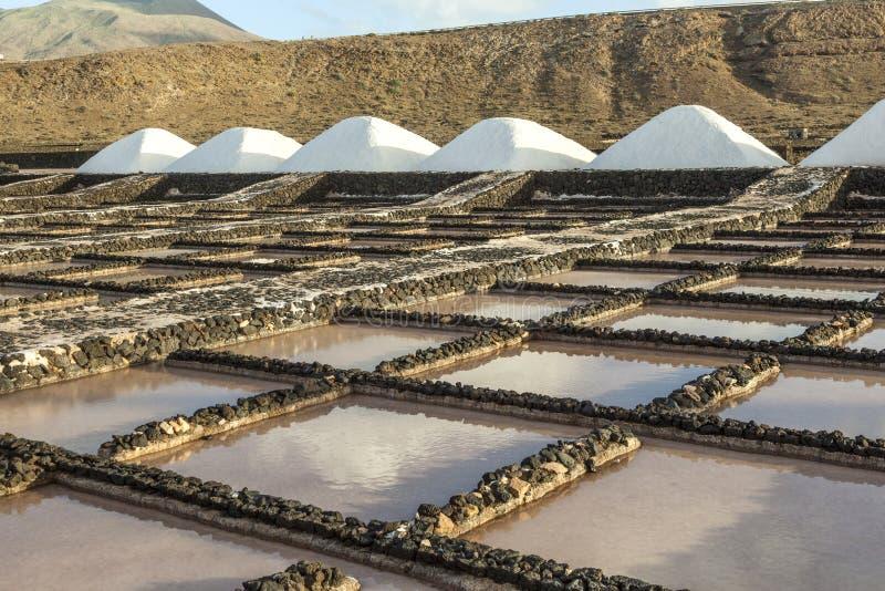 Salzen Sie die Raffinerie, die von Janubio, Lanzarote, Spanien salzig ist stockfoto