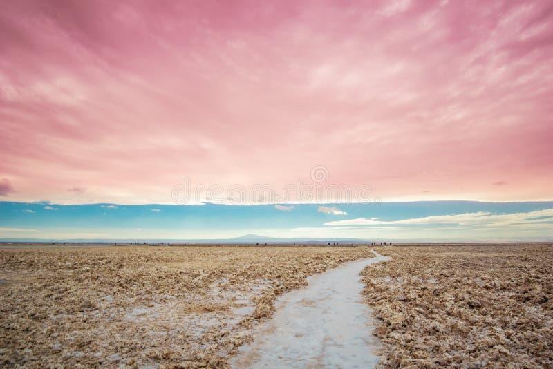 Salzen Sie Landschaft durch die Lagune, die im Andesof das Altiplano von Bolivien cejar ist lizenzfreies stockbild