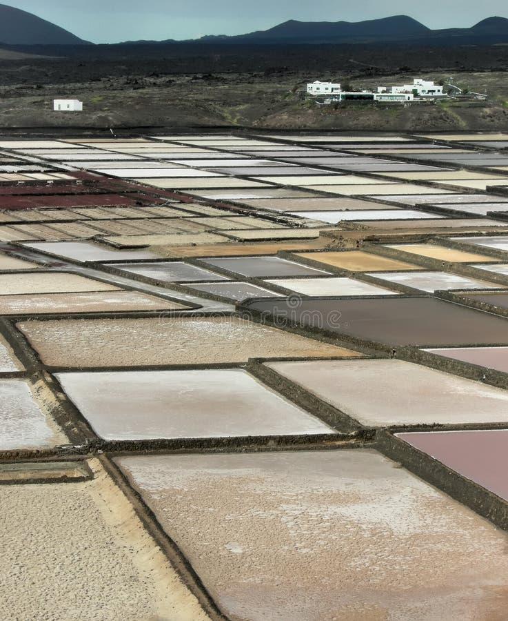 Salzig in Lanzarote no.1 lizenzfreie stockfotografie