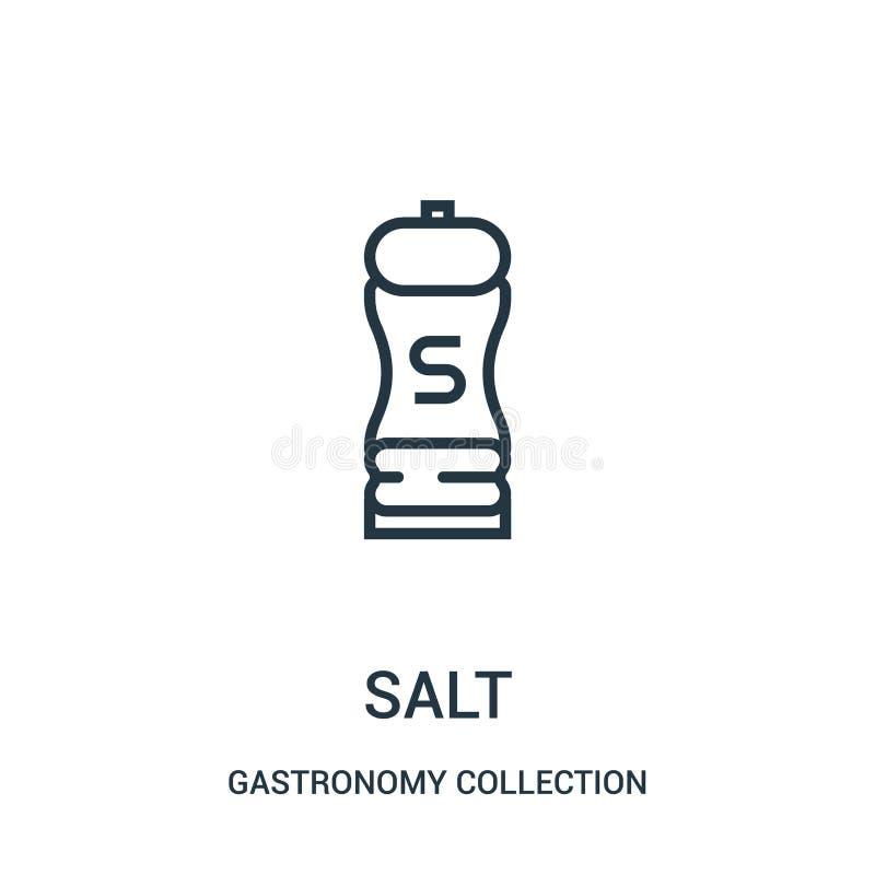 Salzikonenvektor von der Gastronomiesammlungssammlung Dünne Linie Salzentwurfsikonen-Vektorillustration vektor abbildung
