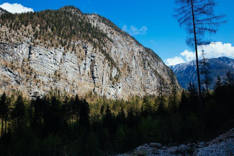 Salzkammergut, Австрия стоковые фото