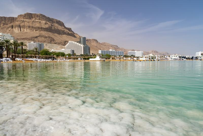 Salzufer des Toten Meers Ein Bokek, Israel stockfotos