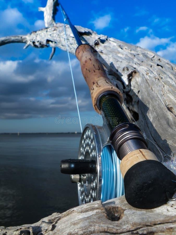 Salzwasserfliegengestänge und -bandspule lizenzfreie stockbilder