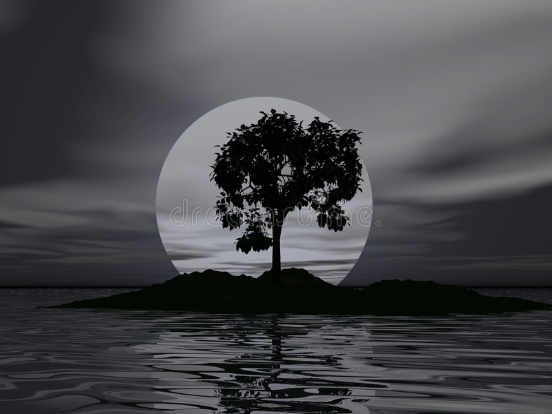 sam drzewo obraz stock