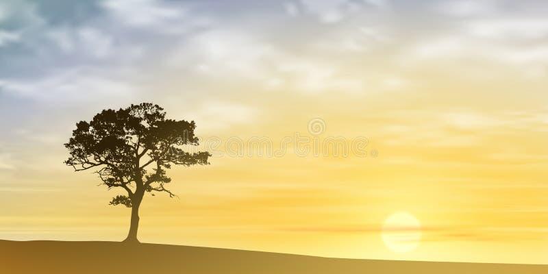sam drzewo ilustracji