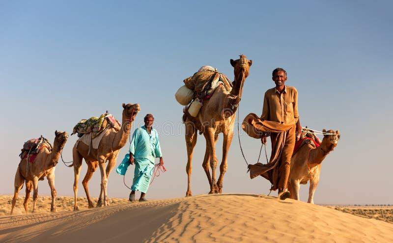 De mens van de kameel leidt zijn kamelen over de woestijn van Thar royalty-vrije stock foto's