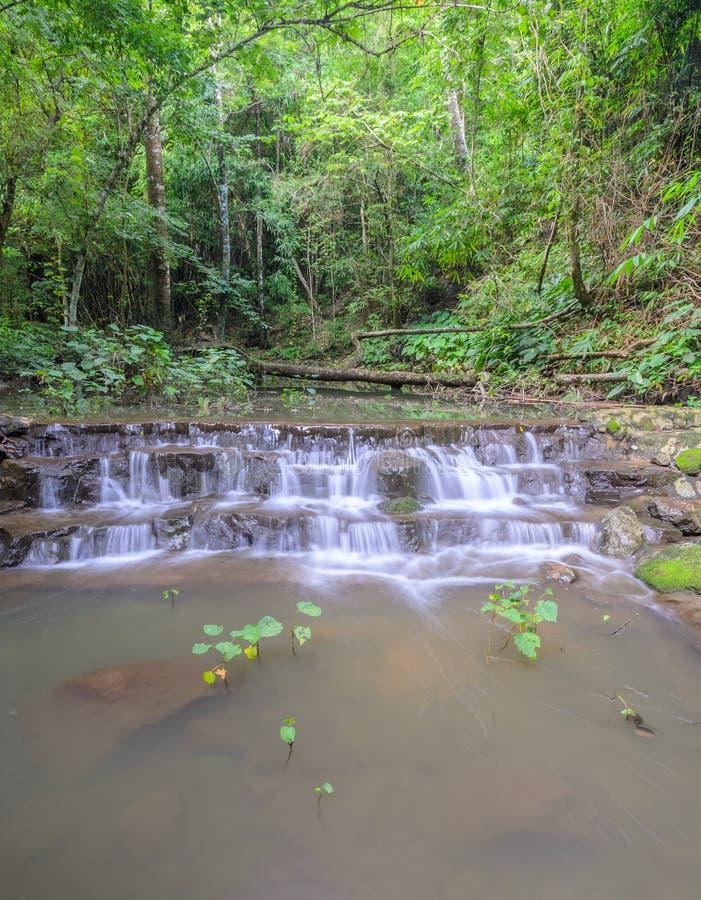 Sam Lan Waterfall dans la forêt verte images libres de droits