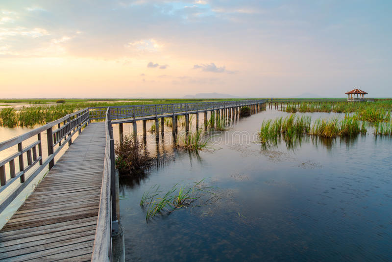 Download Sam roi Yot stock image. Image of pond, bridge, nature - 42431901