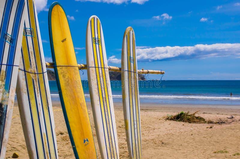Samara Costa Rica, Juni, 26, 2018: Utomhus- sikt av surfingbrädan och palmträdet på strandbakgrund i en ursnygg solig dag arkivfoto