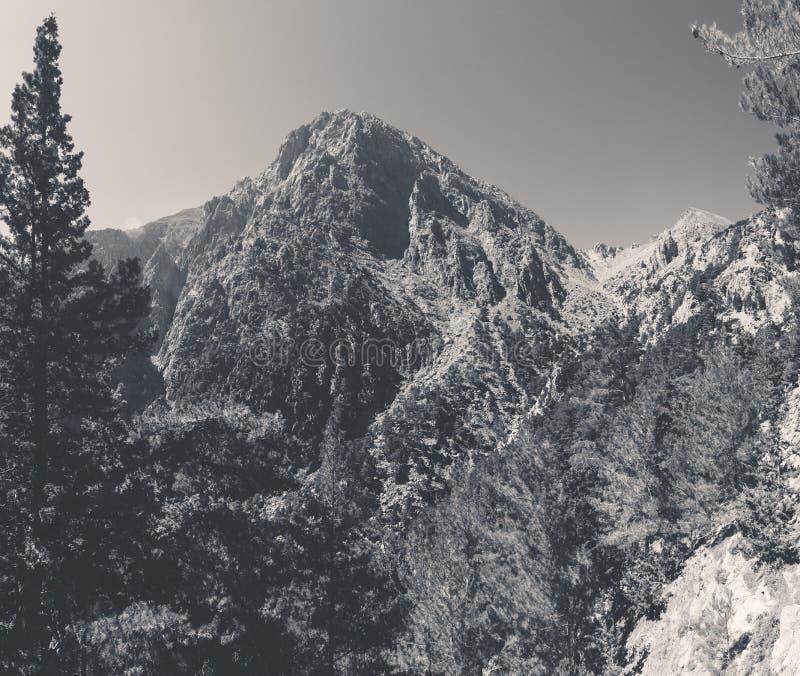 samaria острова Греции gorge Крита Крит Греция стоковое фото