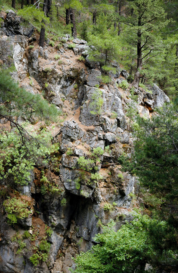 Download Samaria Gorge stock image. Image of park, samaria, lefka - 24336147
