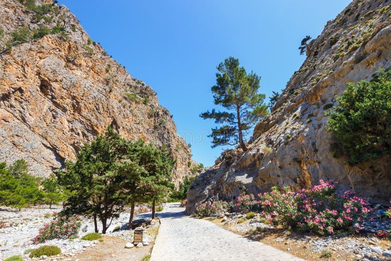 Samaria Gorge su Creta fotografia stock libera da diritti