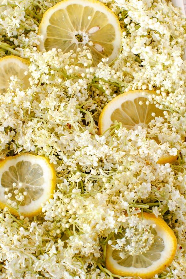 Sambuco e fette di fondo del limone fotografia stock