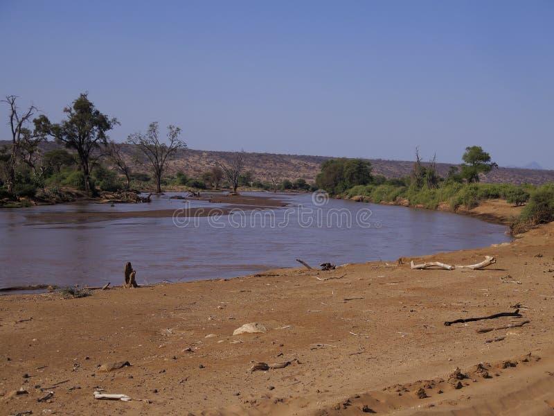 Samburu National Reserve, Kenya royalty free stock photos