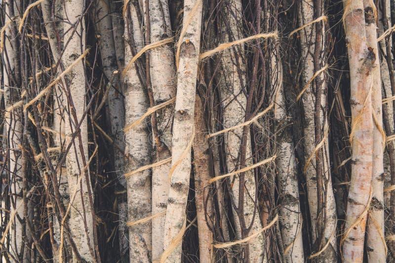 Samengebonden stapel van hout royalty-vrije stock foto