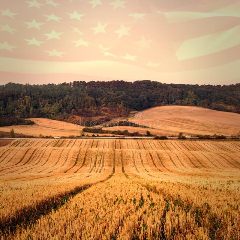 Samengesteld beeld van digitaal het geproduceerde Amerikaanse vlag golven royalty-vrije illustratie