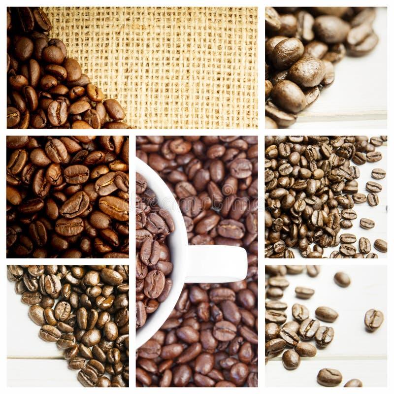 Samengesteld beeld van klein wit kophoogtepunt van koffiebonen royalty-vrije stock foto