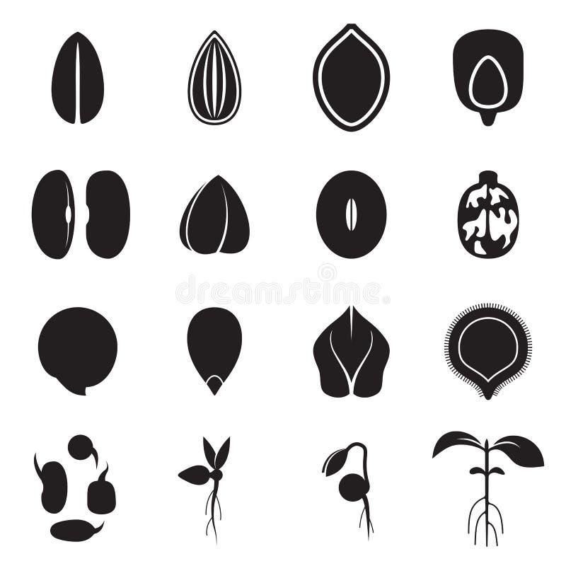 Samenikonensatz, der die allgemeinsten Arten von Erntesamen darstellt stock abbildung