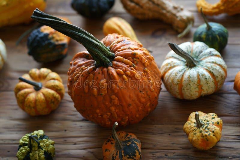 Samenstelling met Halloween-pompoenen stock fotografie