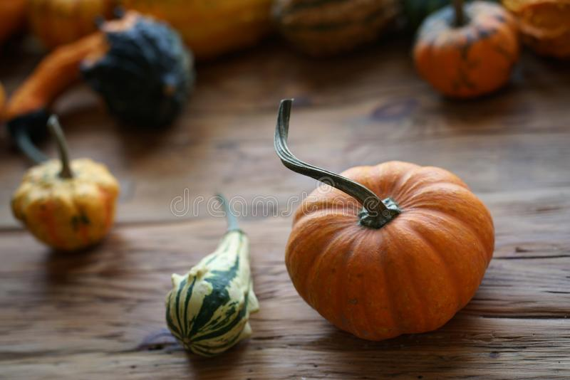 Samenstelling met Halloween-pompoenen stock foto's