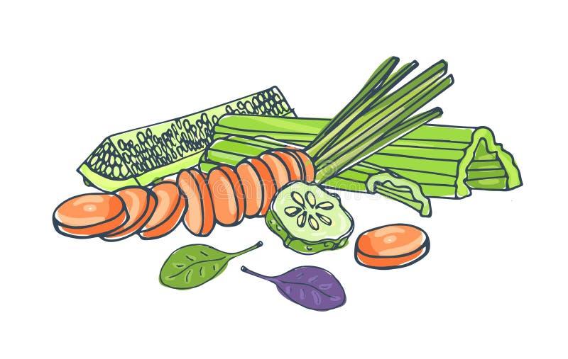 Samenstelling met het verse smakelijke groenten liggen samen geïsoleerd op witte achtergrond - komkommer, selderie, wortel, basil vector illustratie