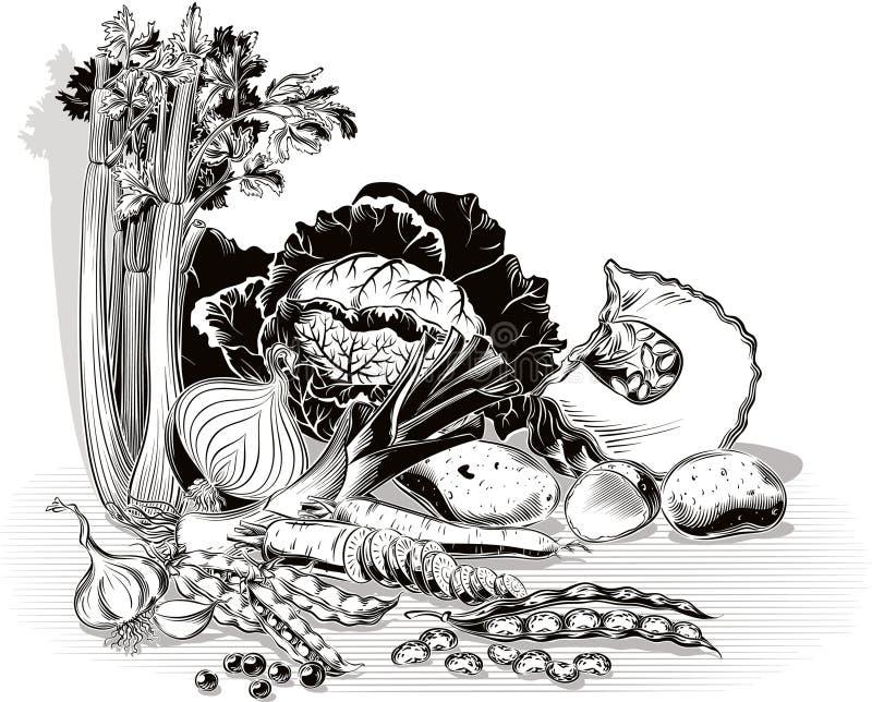 Samenstelling met ui, kool, selderie, aardappels, preien, pumpki vector illustratie