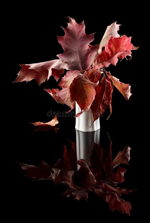 Samenstelling van de herfstbladeren royalty-vrije stock foto