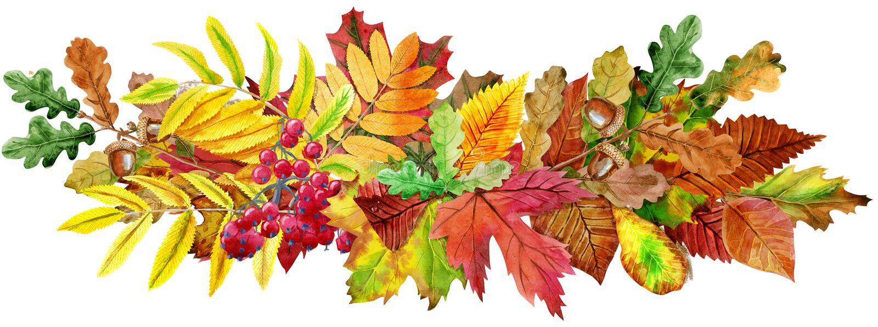 Samenstelling van de herfstbladeren De groetprentbriefkaar nodigt decoratieve exemplaarruimte uit stock illustratie