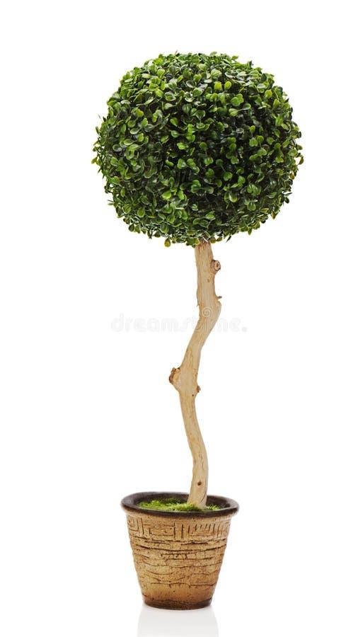 Samenstelling van groen kunstmatig gras royalty-vrije stock afbeelding