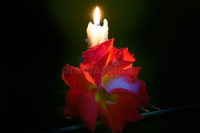 Samenstelling van kaarsen en rozen op een donkere achtergrond stock foto's