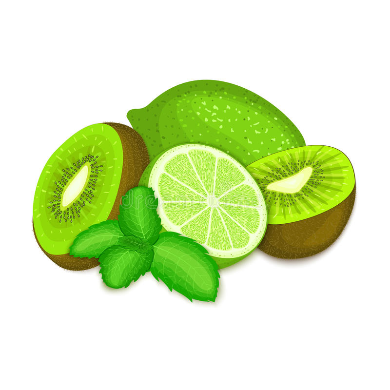 Samenstelling van kiwi, kalk en muntbladeren Rijpe vector kiwifruits en groene citroen met het verse smakelijke blad van de peper stock illustratie