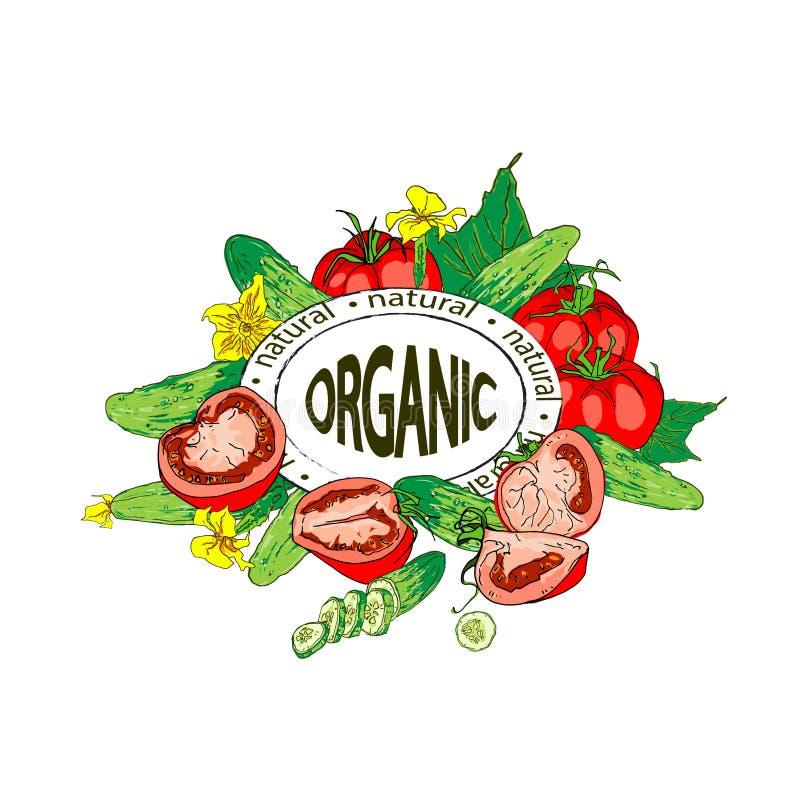 Samenstelling van tomaten en komkommers, geheel en stukken Organisch Product stock illustratie