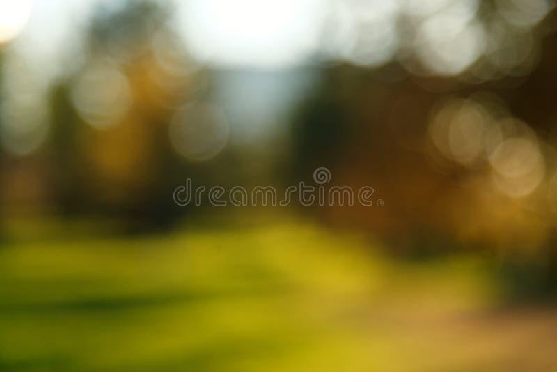 Samenvatting vage aardachtergrond Bosbomen, Zonnige dag, zonglans, bokeh Defocusedachtergrond voor uw ontwerp stock afbeeldingen
