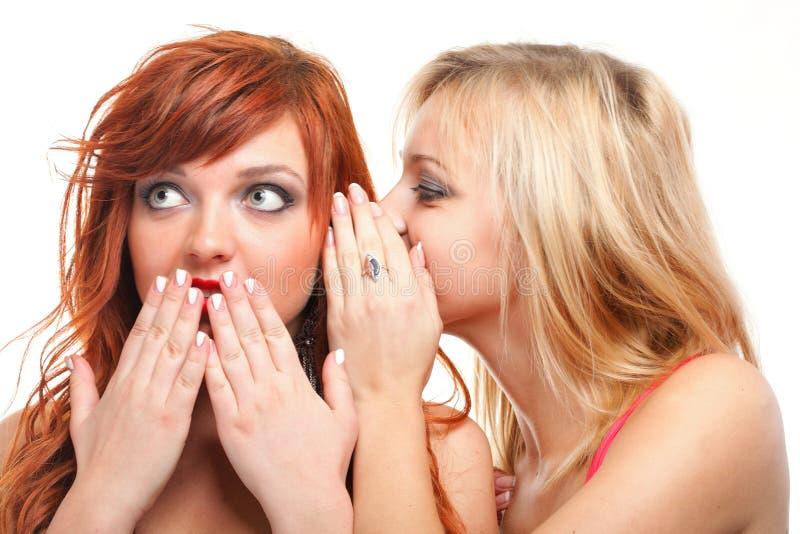 Samhälleskvaller - två lyckliga unga flickvänner som talar vit backg royaltyfri foto