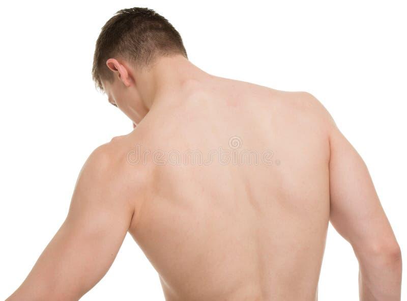 Samiec ciała sprawności fizycznej anatomii Tylny pojęcie obrazy stock