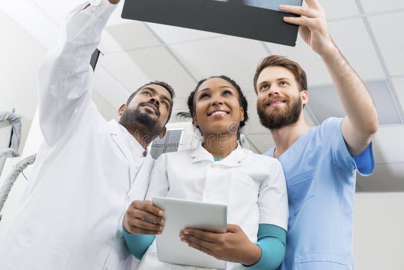 Samiec I kobiety lekarka Egzamininuje promieniowanie rentgenowskie Z Cyfrowej pastylką fotografia royalty free