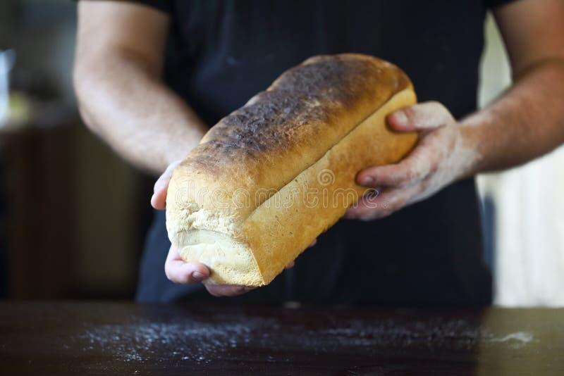 Samiec wręcza trzymać świeżo piec chleb zdjęcie stock